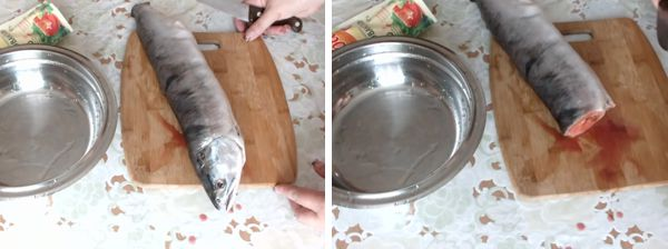 Как сделать древо семьи своими руками фото на листе а4