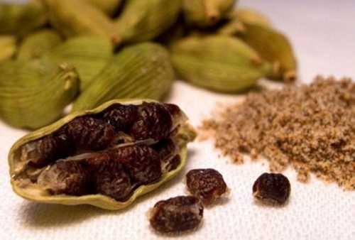 кардамон полезные свойства и противопоказания