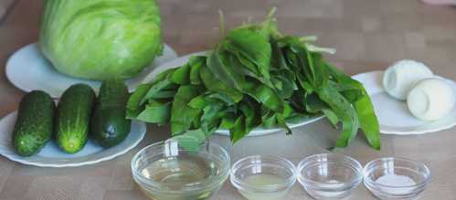 Салат из черемши: ТОП-12 рецептов просто и вкусно