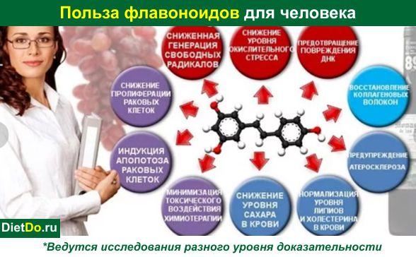 Что такое флавоноиды и воздействие