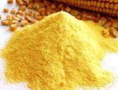 кукурузная мука польза и вред